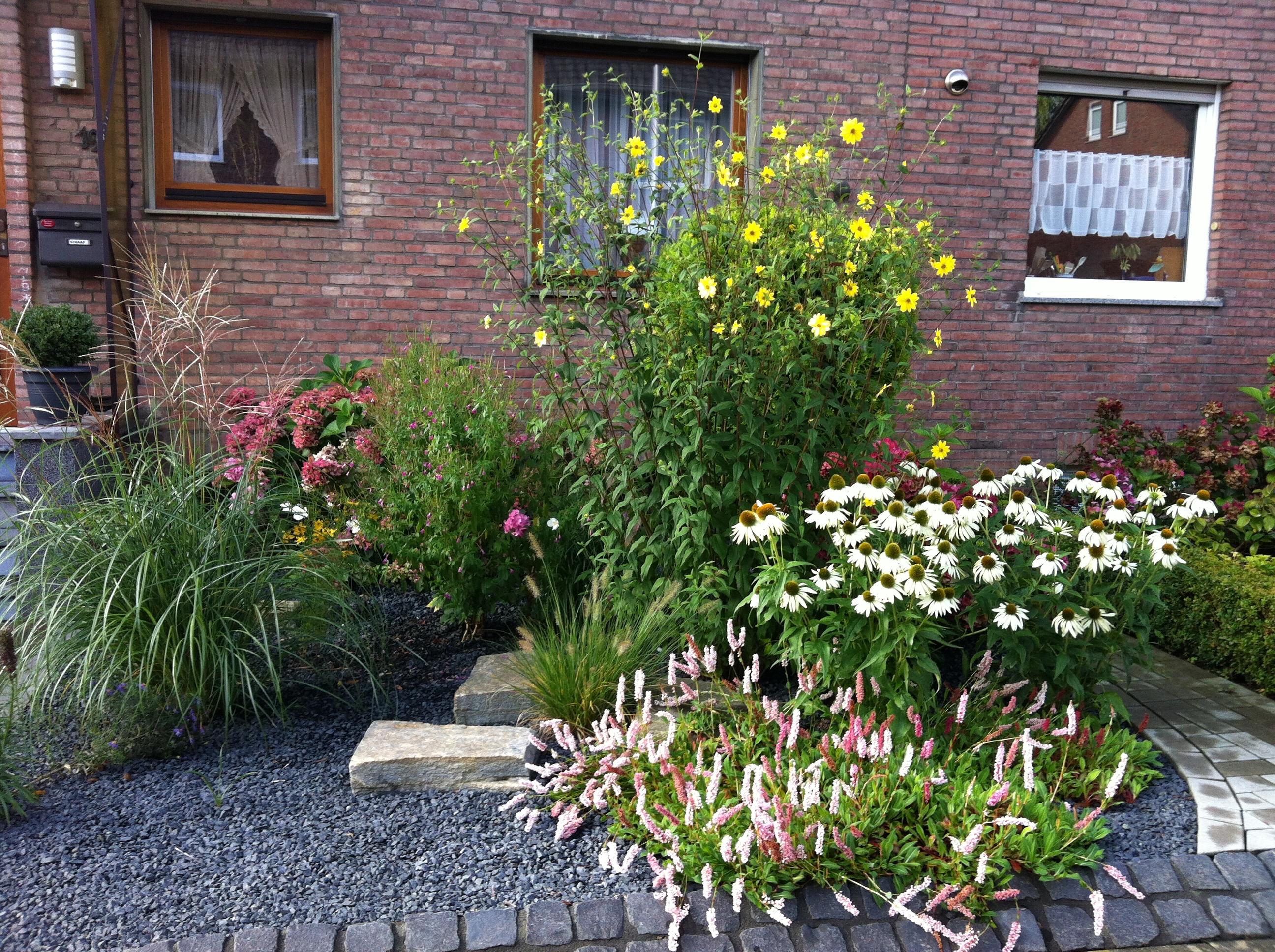 Gartenschönmacher Galerie: Bepflanzung, Tobias Bass Aachen