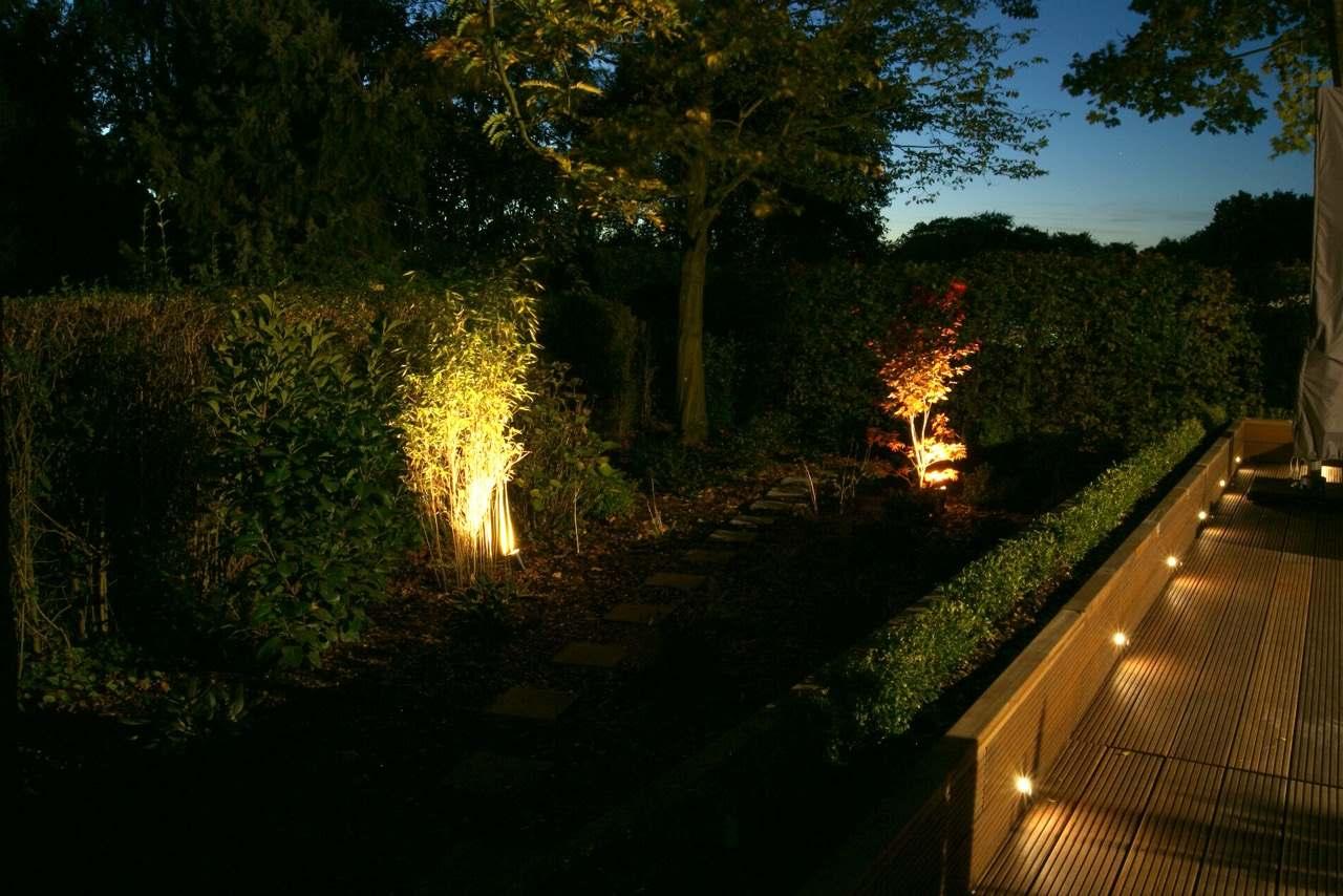 Licht im Garten 1