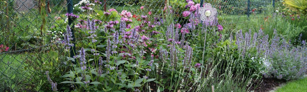 Gartengestaltung Aachen